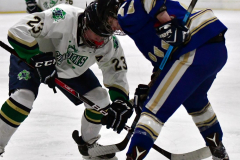 Gallery CIAC Ice Hockey; Northeastern 4 vs. Newtown 3 - Photo # 1298