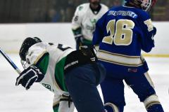 Gallery CIAC Ice Hockey; Northeastern 4 vs. Newtown 3 - Photo # 1304