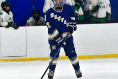 Gallery CIAC Ice Hockey; Northeastern 4 vs. Newtown 3 - Photo # 993