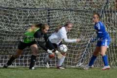 CIAC NVL Girls Soccer Qtr Finals #1 Woodland 8 vs. #8 Seymour 0 _ (6)