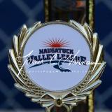CIAC Softball - NVL All - Award Teams - Photo #1