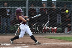 CIAC Softball Class L Tournament SF's #1 Pomperaug 5 vs. #4 Torrington 1 - Photo (48)