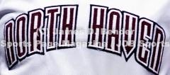 Gallery CIAC Softball: Sheehan 5 vs. North Haven 3