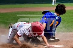 Galley CIAC BASE; Wolcott 8 vs. Haddam-Killingworth 0 - Photo # 1701