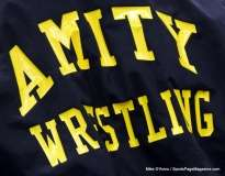 CIAC Wrestling Amity vs. Hall (1)