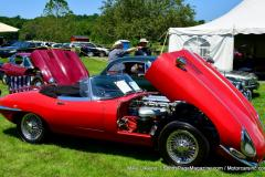 Gallery Motorsports; Lyman Orchard Jaguar Show - Photo # 026