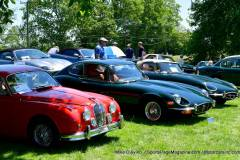 Gallery Motorsports; Lyman Orchard Jaguar Show - Photo # 043