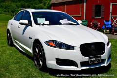 Gallery Motorsports; Lyman Orchard Jaguar Show - Photo # 056