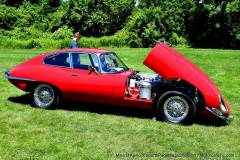 Gallery Motorsports; Lyman Orchard Jaguar Show - Photo # 063