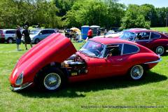 Gallery Motorsports; Lyman Orchard Jaguar Show - Photo # 064