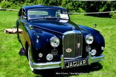 Gallery Motorsports; Lyman Orchard Jaguar Show - Photo # 071