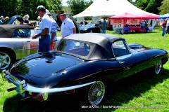 Gallery Motorsports; Lyman Orchard Jaguar Show - Photo # 081