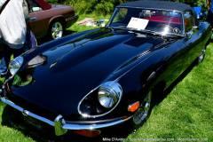 Gallery Motorsports; Lyman Orchard Jaguar Show - Photo # 084