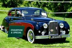 Gallery Motorsports; Lyman Orchard Jaguar Show - Photo # 099
