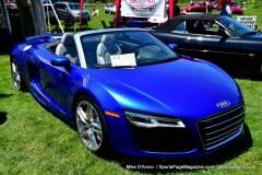 Gallery Motorsports; Lyman Orchard Jaguar Show - Photo # 104