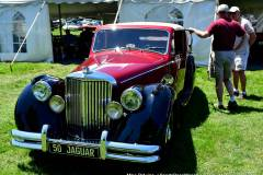 Gallery Motorsports; Lyman Orchard Jaguar Show - Photo # 107
