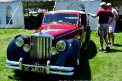 Gallery Motorsports; Lyman Orchard Jaguar Show - Photo # 107