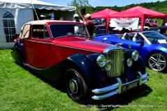 Gallery Motorsports; Lyman Orchard Jaguar Show - Photo # 108