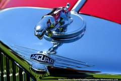 Gallery Motorsports; Lyman Orchard Jaguar Show - Photo # 109