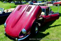 Gallery Motorsports; Lyman Orchard Jaguar Show - Photo # 123