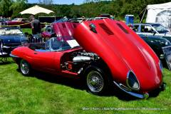 Gallery Motorsports; Lyman Orchard Jaguar Show - Photo # 128