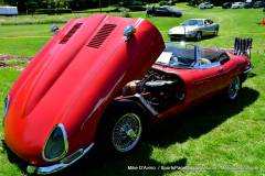 Gallery Motorsports; Lyman Orchard Jaguar Show - Photo # 129