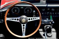 Gallery Motorsports; Lyman Orchard Jaguar Show - Photo # 131