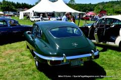 Gallery Motorsports; Lyman Orchard Jaguar Show - Photo # 175