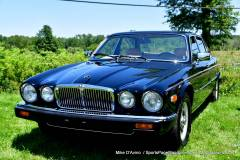 Gallery Motorsports; Lyman Orchard Jaguar Show - Photo # 183
