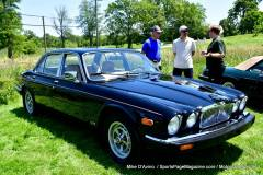 Gallery Motorsports; Lyman Orchard Jaguar Show - Photo # 184