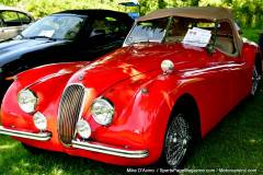 Gallery Motorsports; Lyman Orchard Jaguar Show - Photo # 239