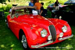 Gallery Motorsports; Lyman Orchard Jaguar Show - Photo # 243