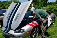 Gallery Motorsports; Lyman Orchard Jaguar Show - Photo # 263