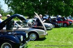 Gallery Motorsports; Lyman Orchard Jaguar Show - Photo # 291
