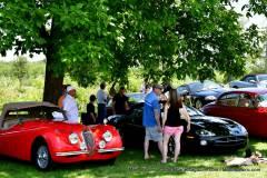 Gallery Motorsports; Lyman Orchard Jaguar Show - Photo # 298