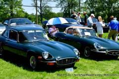Gallery Motorsports; Lyman Orchard Jaguar Show - Photo # 300