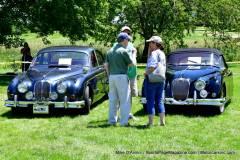 Gallery Motorsports; Lyman Orchard Jaguar Show - Photo # 305