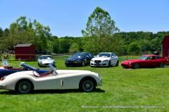 Gallery Motorsports; Lyman Orchard Jaguar Show - Photo # 319