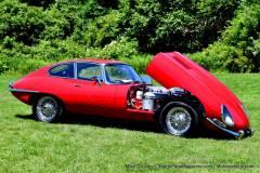 Gallery Motorsports; Lyman Orchard Jaguar Show - Photo # 320