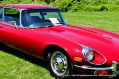 Gallery Motorsports; Lyman Orchard Jaguar Show - Photo # 331