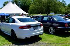 Gallery Motorsports; Lyman Orchard Jaguar Show - Photo # 336