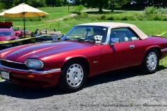 Gallery Motorsports; Lyman Orchard Jaguar Show - Photo # 343