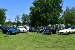 Gallery Motorsports; Lyman Orchard Jaguar Show - Photo # 416