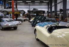 Jaguar Club of Southern New England Meeting - Photo # (2)