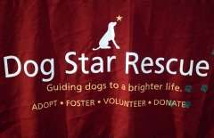 The 2016 Dream Ride Experience, Adopt a Dog, by Mike # (47)
