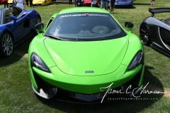 Motorsports - The 2017 Dream Ride Experience by James G. - Photo Number (26)