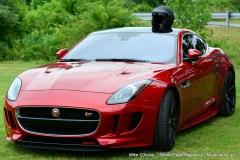 Lyman Orchards Jaguar Car Show - Photo # 014