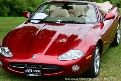 Lyman Orchards Jaguar Car Show - Photo # 020