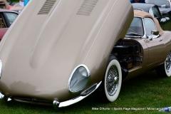 Lyman Orchards Jaguar Car Show - Photo # 067