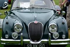 Lyman Orchards Jaguar Car Show - Photo # 072